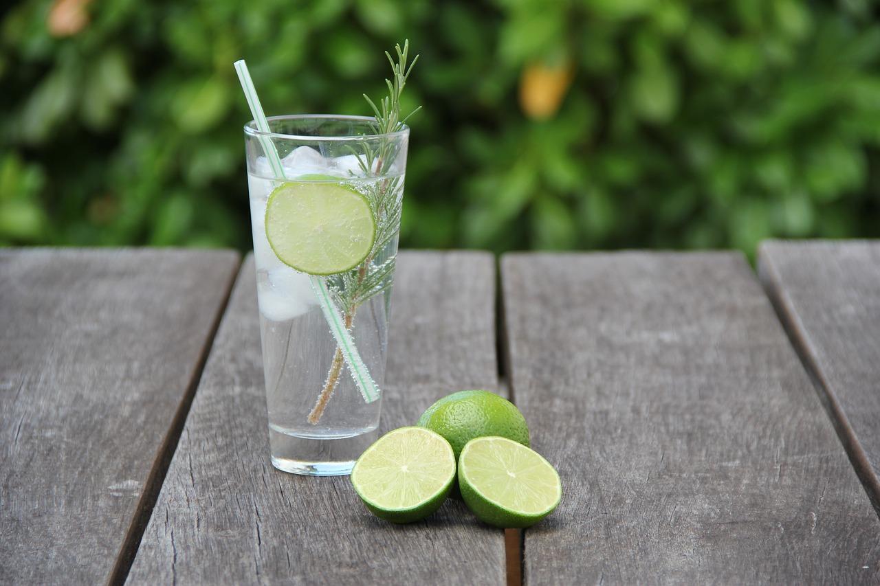 Bedste gin og tonic